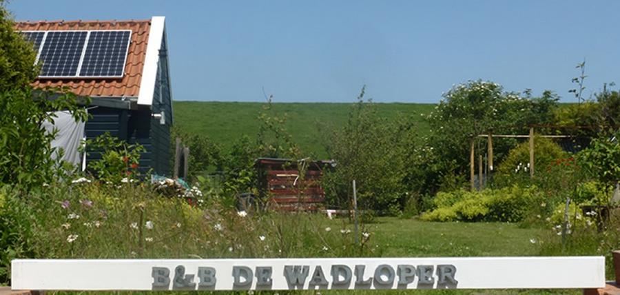 wadloper